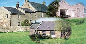 Detchant Cottages